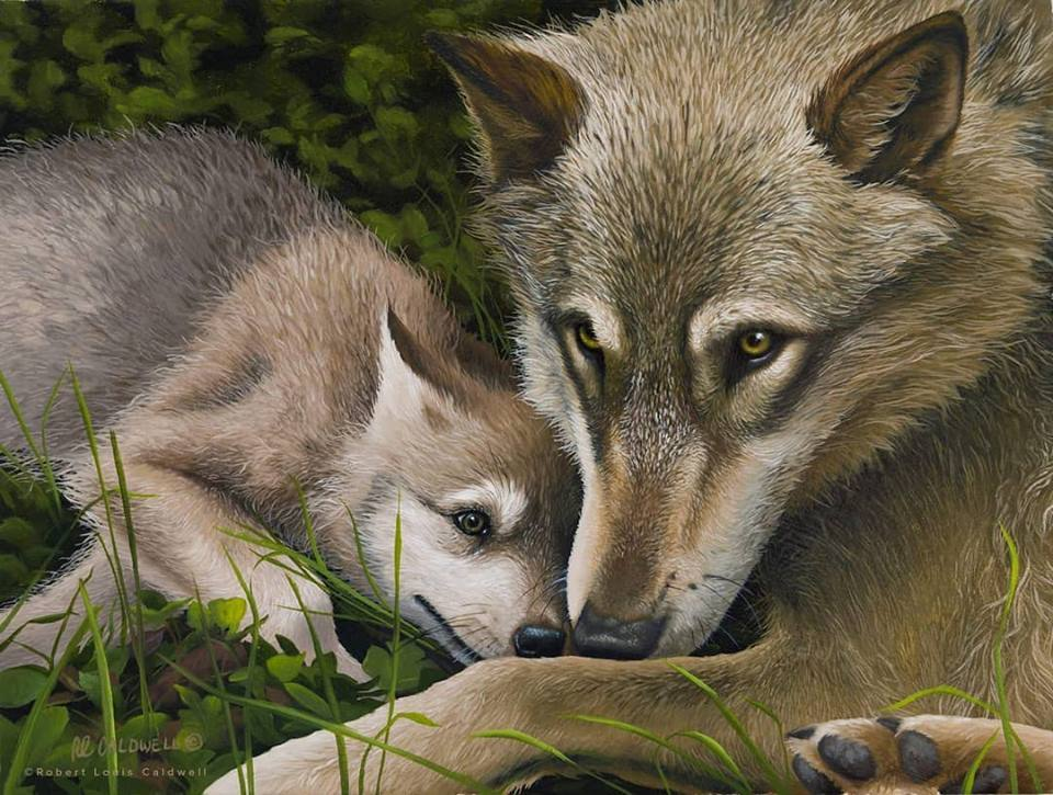 Robert Caldwell_wildlife artist_painter_instructor_adventurer_Virginia artist_