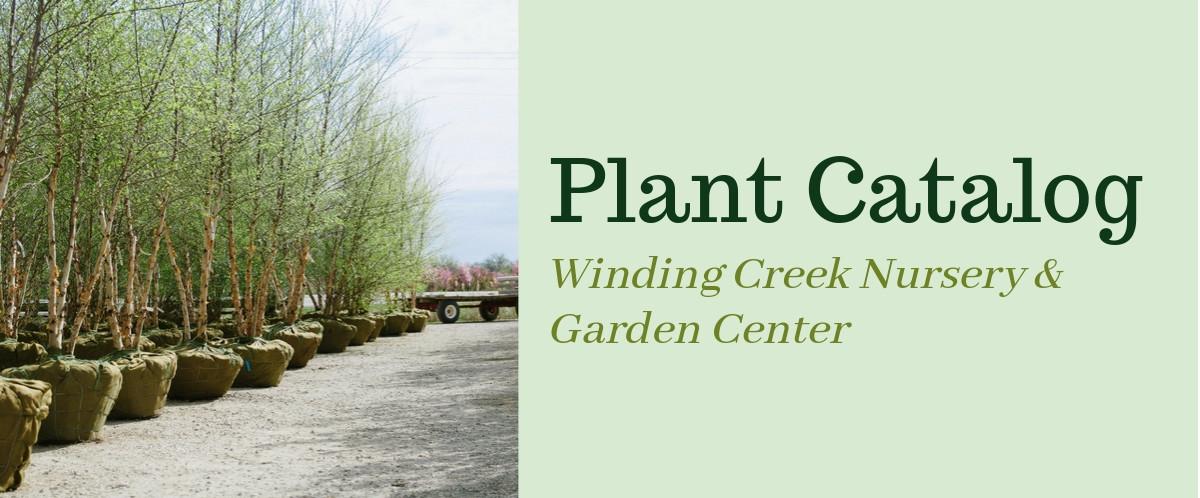 Winding_Creek Nursery_Stock_Catalog