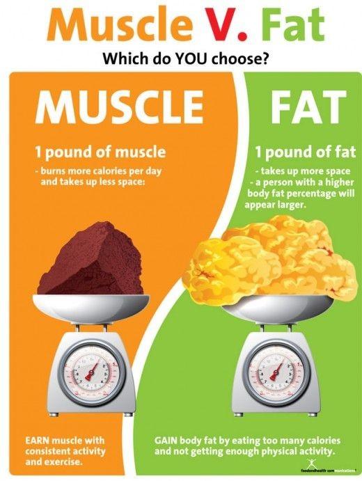 Muscle_vs_Fat