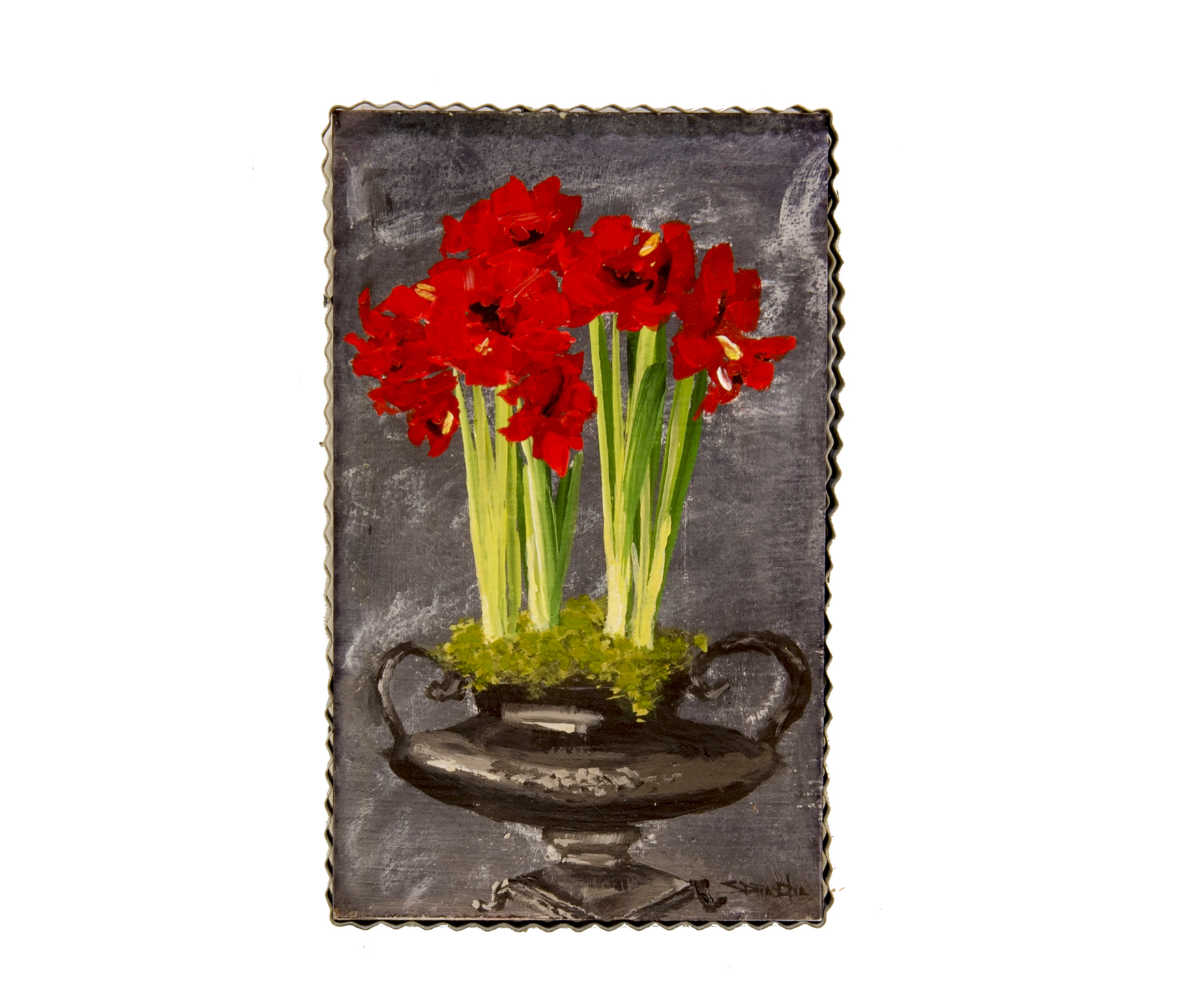Large Red Amaryllis