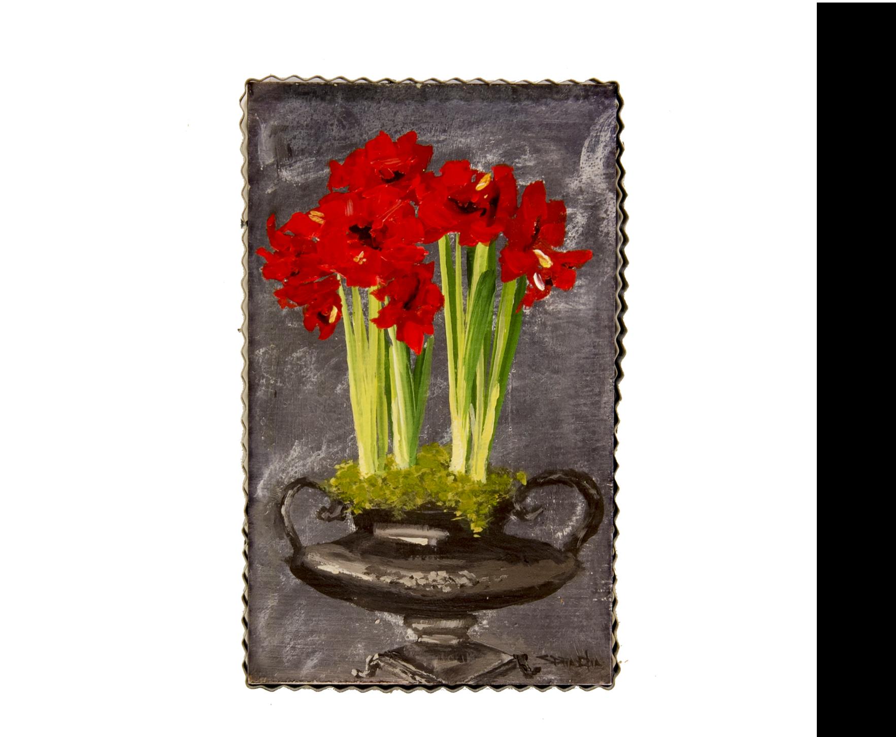 Large Red Amaryllis