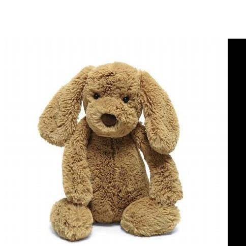 Bashful Toffee Puppy