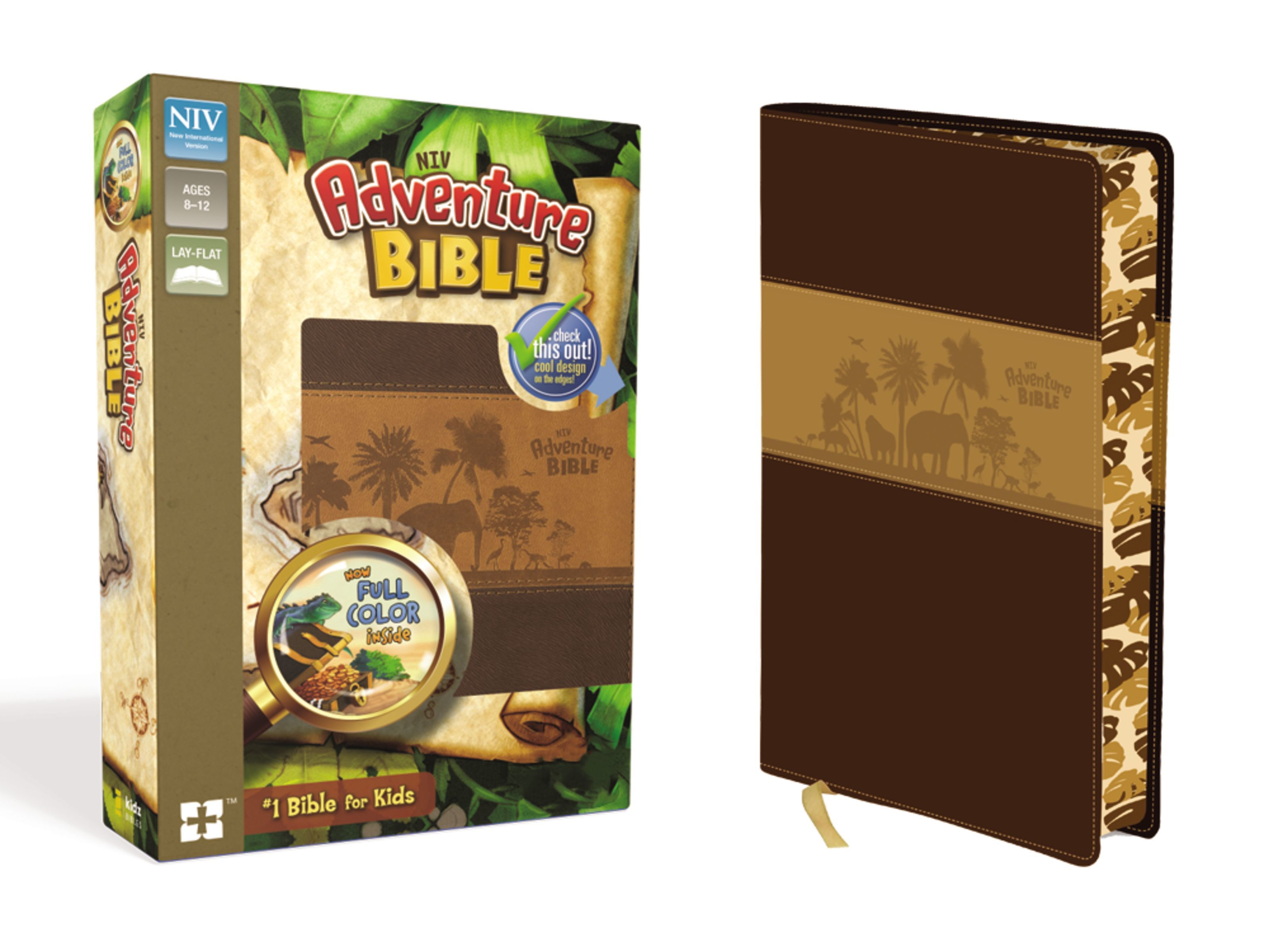 NIV Adventure Bible- Brown