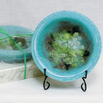 Gardenia Water Lily