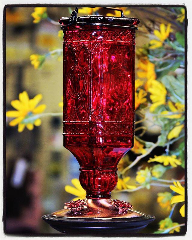 hummingbird feeder, red, antique, bottle, Hummingbird, hummingbirds, feeder, nectar