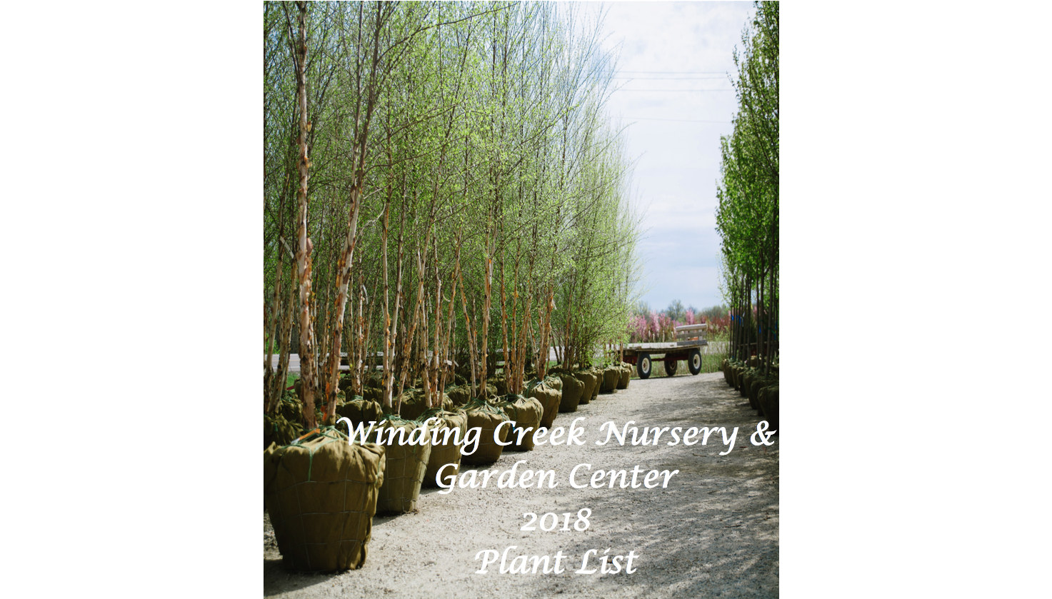 2018_Winding_Creek Nursery_Stock_Catalog