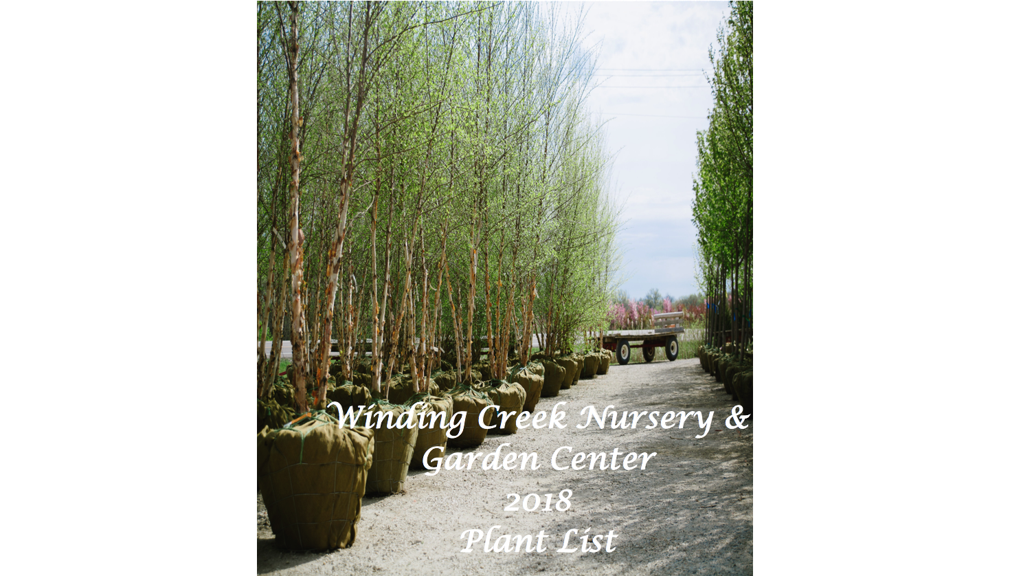 2018_Winding_Creek_Nursery_Nursery_Stock