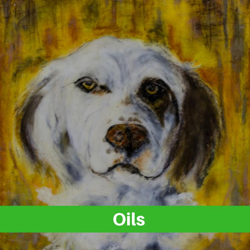 Oils art in Stagecoach Gallery Platte,SD