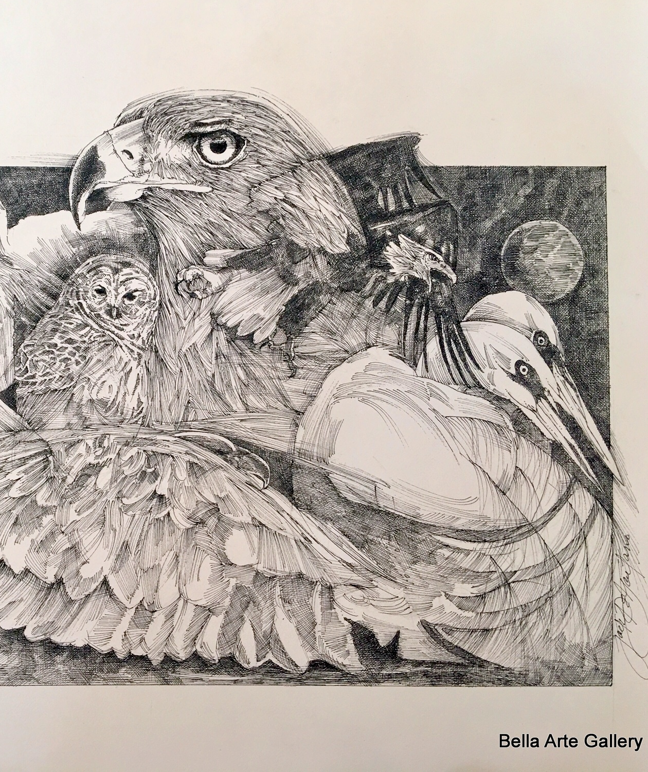 pen & ink, animal collage, eagle, owl, birds, artist Jack DeGaetano, Virginia artist, wild animals, furry animals,sea animal