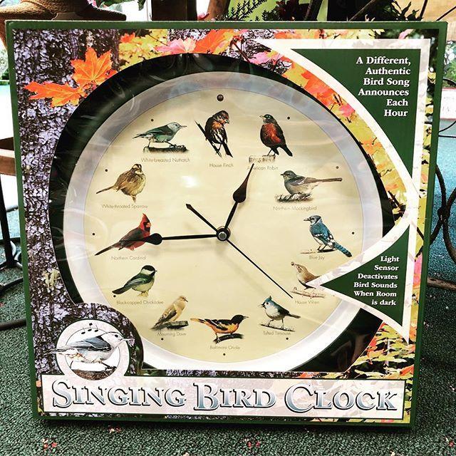 singing bird clock, home decor, original, gift