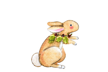 Woodland Rabbit