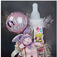 It's A Girl bottle bank and plush animal
