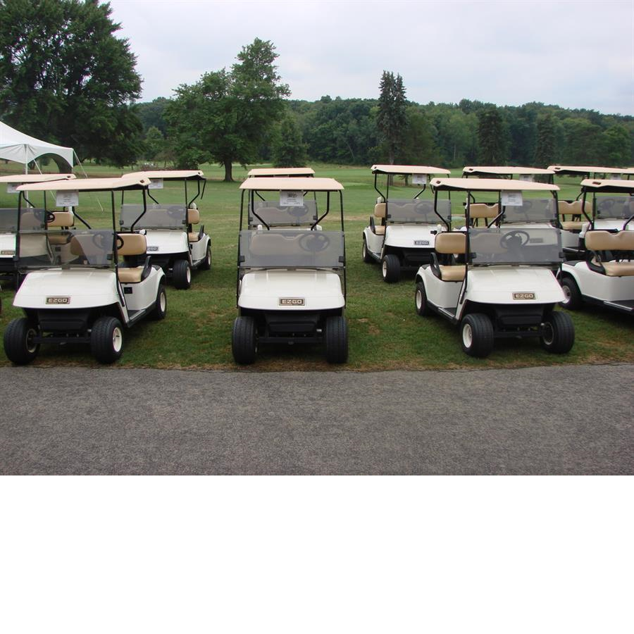 Oakview Golf Club golf carts