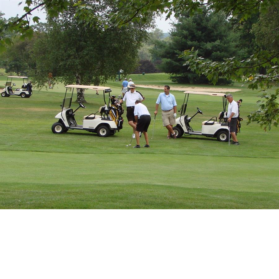 Oakview Golf Club golf carts players