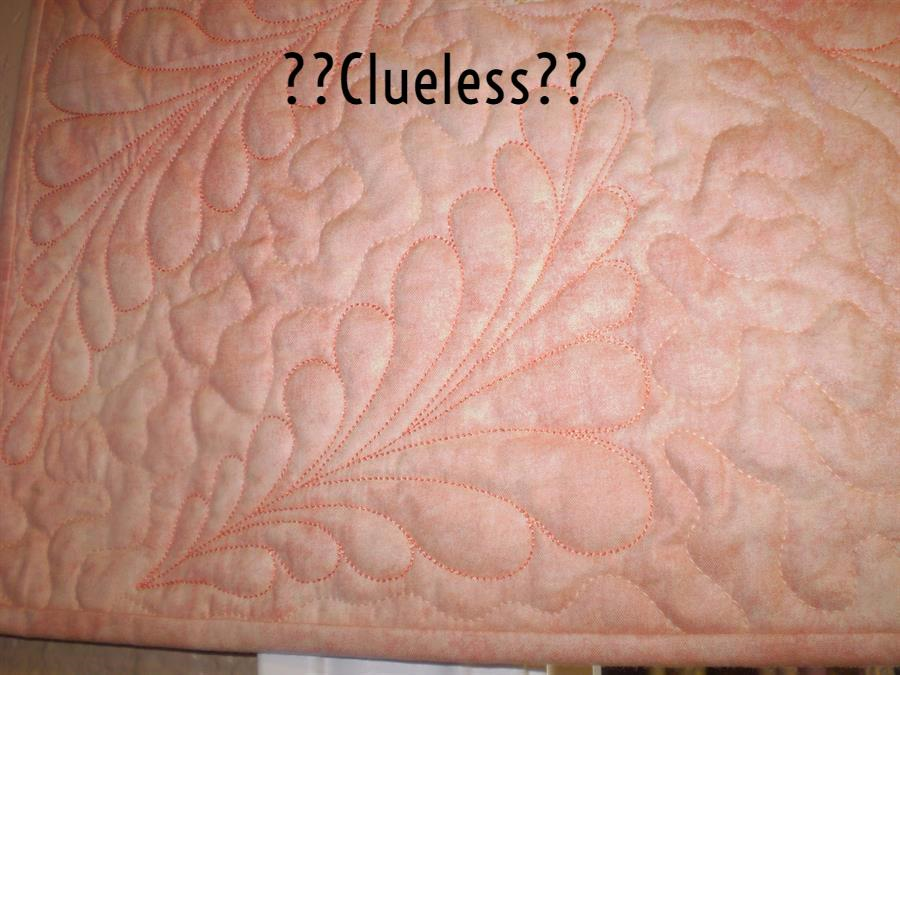 Clueless A Quilted Crow