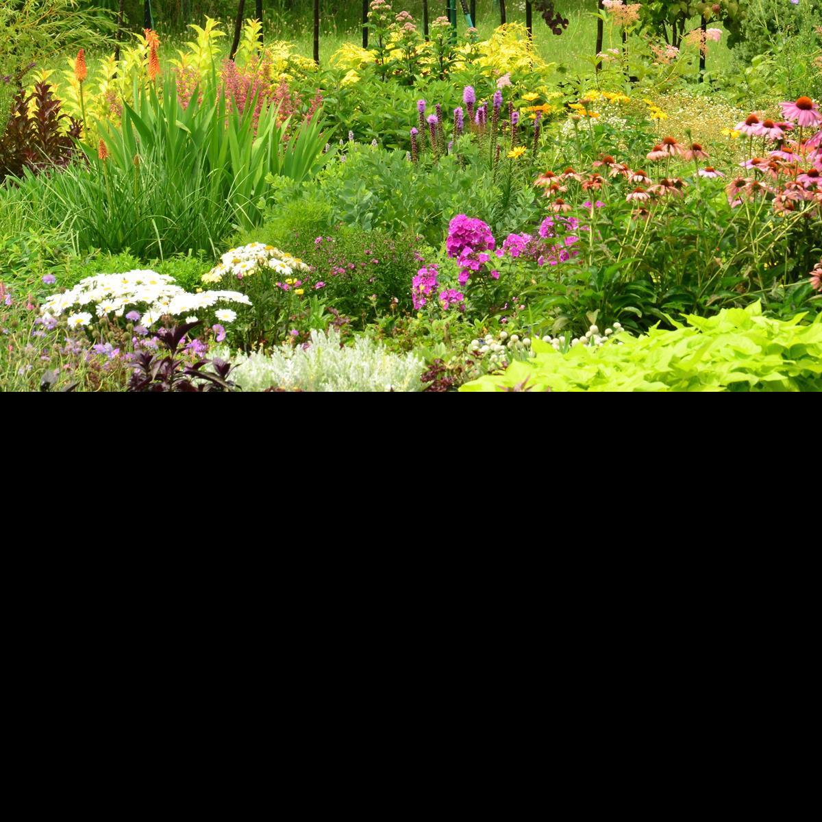 floral flowers bushes Pharo Garden Centre Bethlehem pa