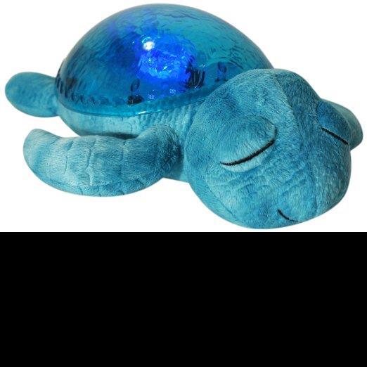 Twinkle Turtle