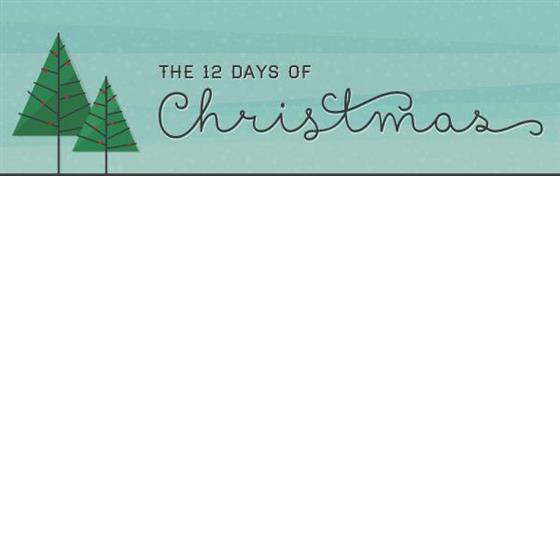 12 Days of Christmas Savings!