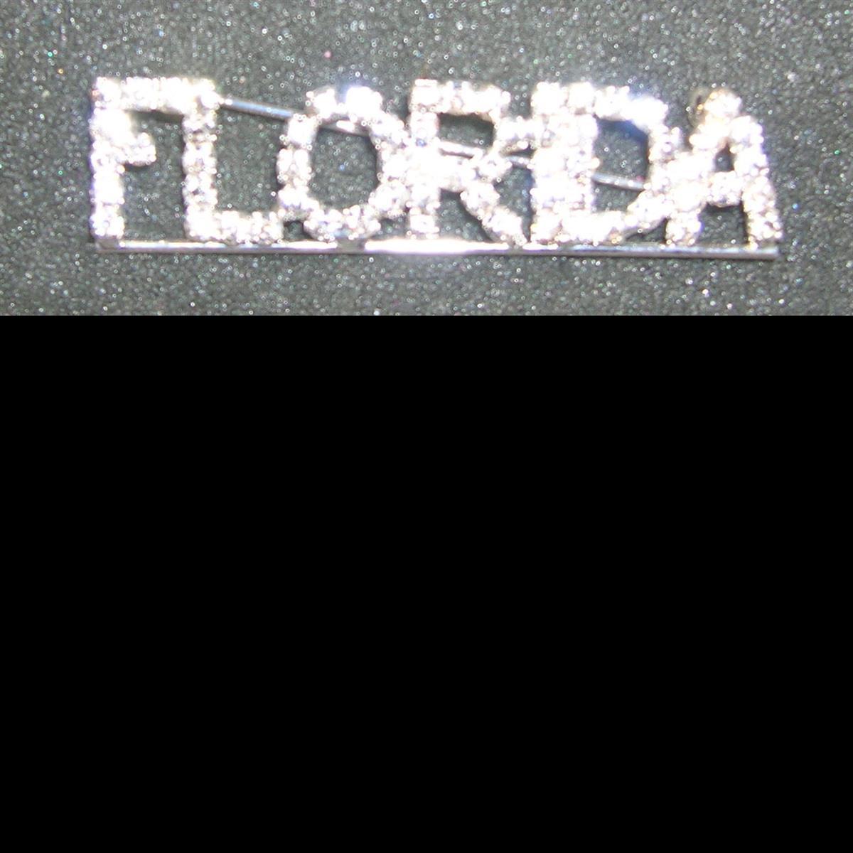 FLORIDA Pin