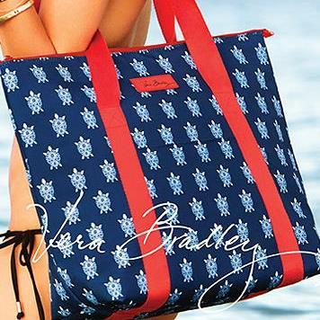 handbag_travel_purse_scarf_wallet_collegiate_wristlet