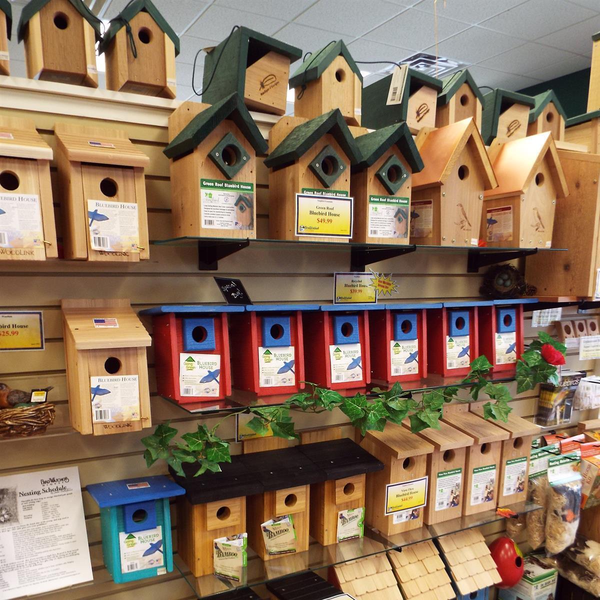 Bird houses nest box bluebird