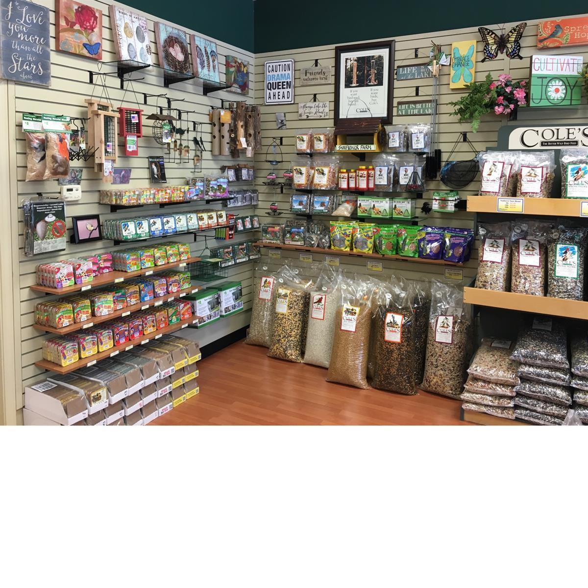 Seed, suet, feeder, feeders, bird food, bird seed, Cole's Wild Bird Products