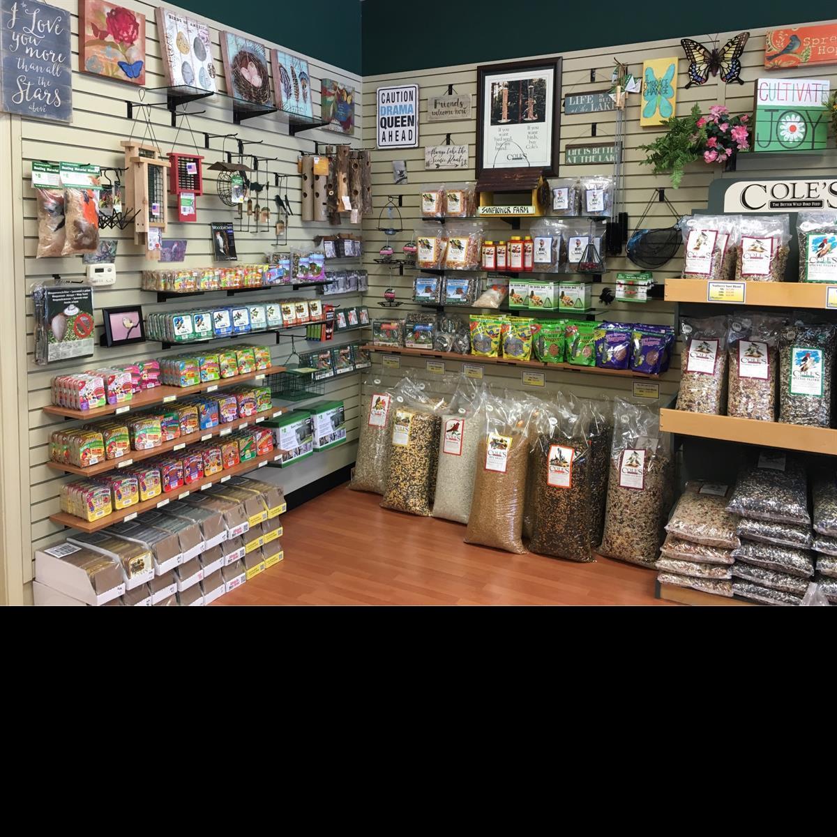 Seed, suet, feeder, feeders, bird food, bird seed, Cole's Wild Bird Products