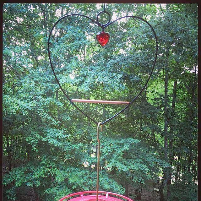 bird, hummingbird, swing, feeder, saucer, bee proof