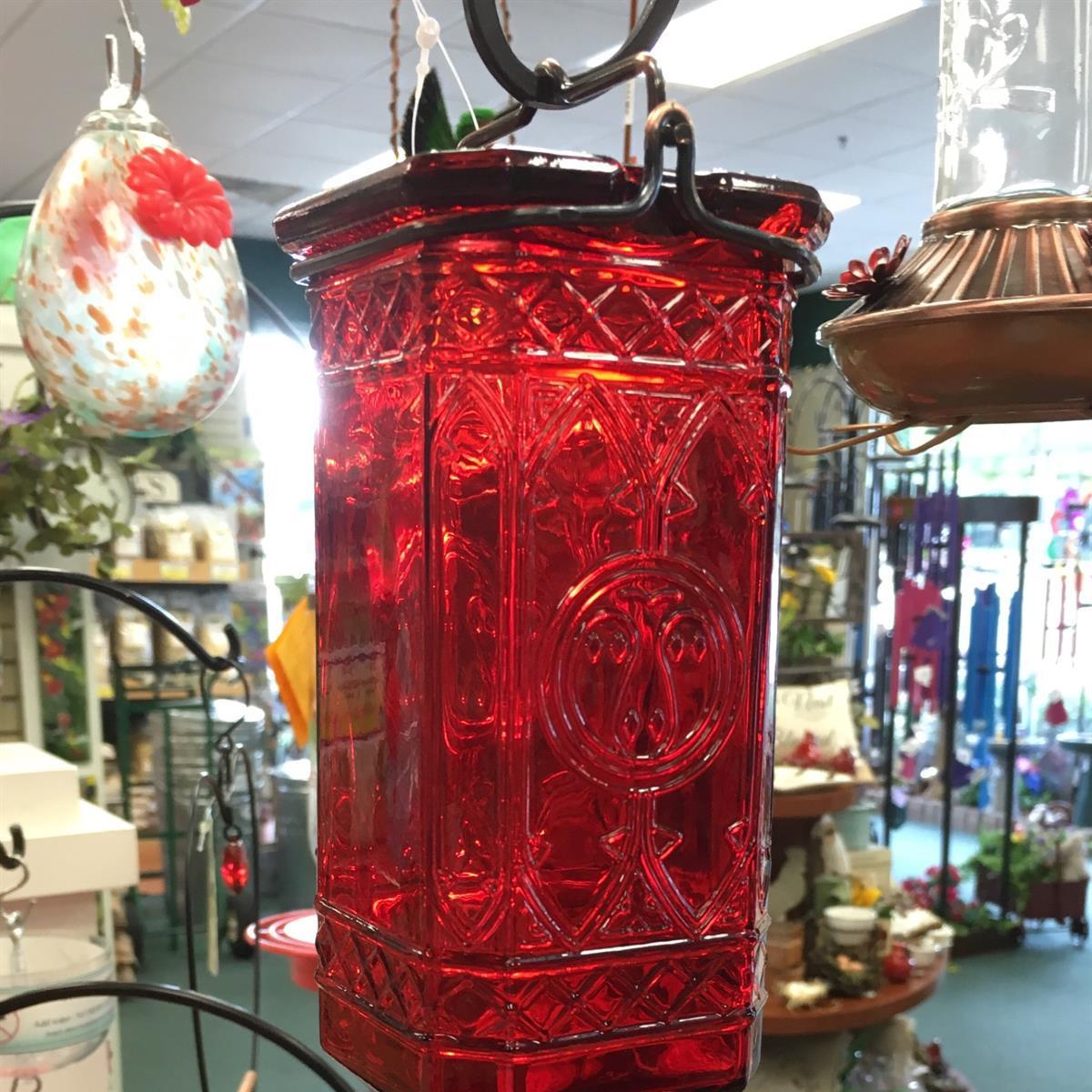 Hummingbird, hummingbirds, feeder, nectar, antique bottle, red glass, hummingbird feeder