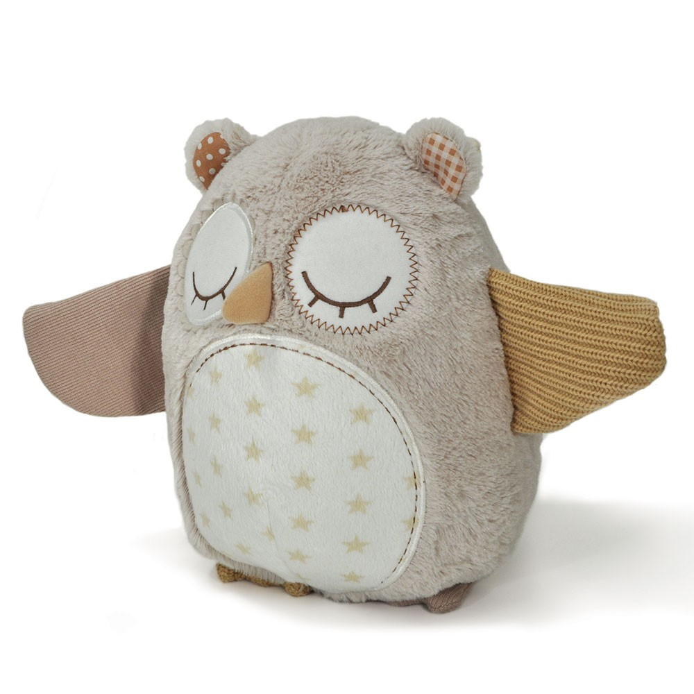 Nighty Night Owl Smart Sensor