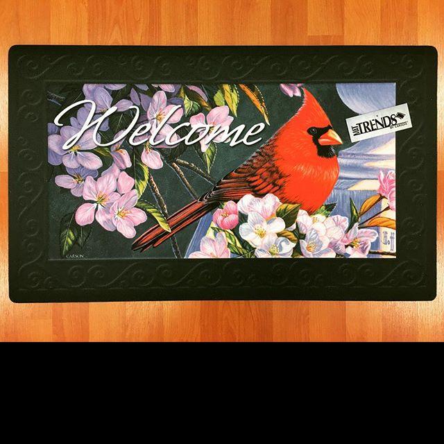 Carson, welcome mat, bird, cardinal, dogwood, spring
