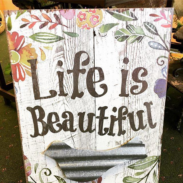 wall art, inspiration, life is beautiful, galvanized metal, bird, floral, young's