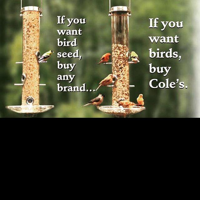 Cole's, bird seed, bird food