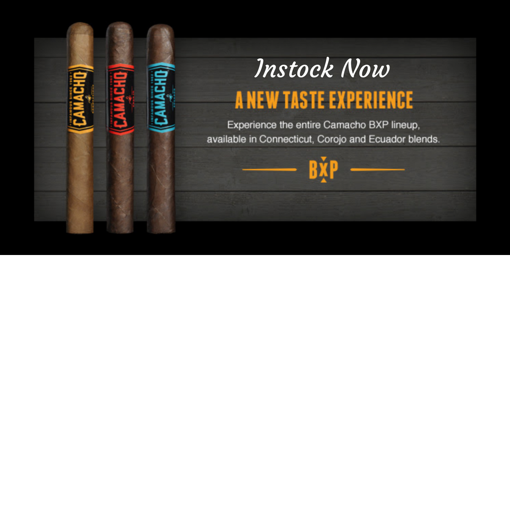 The new Camacho BXP