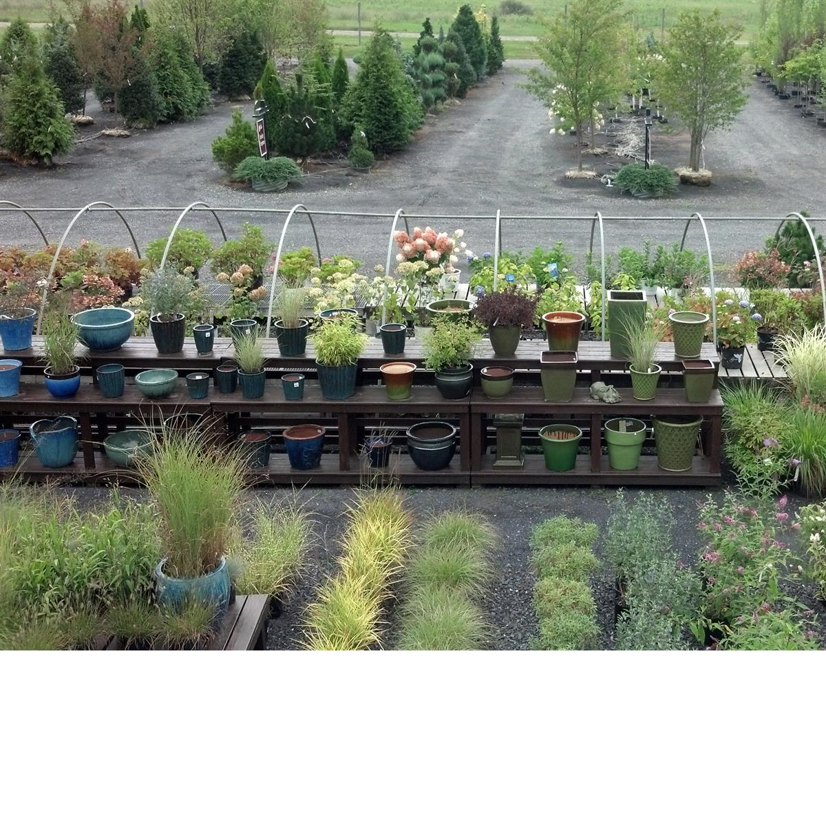 Overview_of_nursery