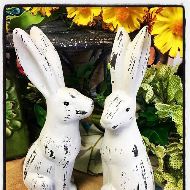 Easter, bunnies, spring, garden