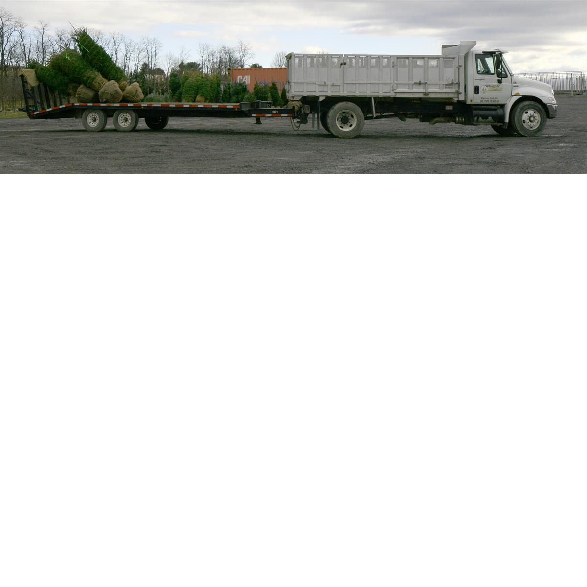 Truck_with_trees