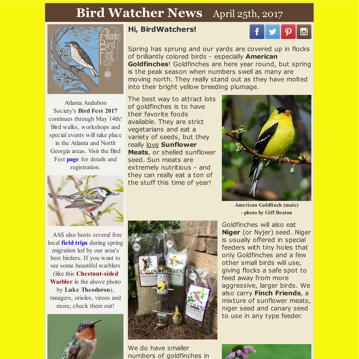 shop local, spring, bird, birds, goldfinches, warblers, migrants, field trips, bird seed, bird feeding, hummingbirds