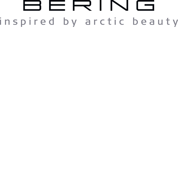 Bering Inspired by arctic beauty Logo
