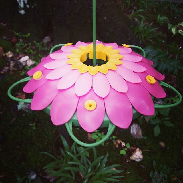 hummingbird feeder, pink, purple, whimsical, flower, nature's way