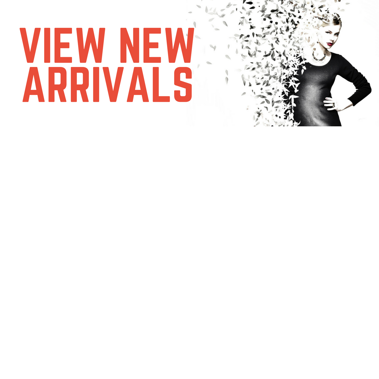 View New Arrivals for Hamilton's Ladies Apparel in Ripon WI and Berlin Wi