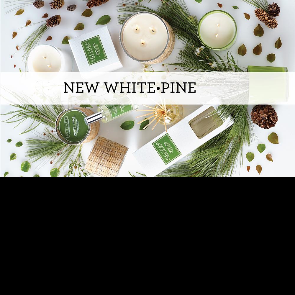 Hillhouse_Naturals_botanical_candle_pine_USA_quality_contemporary